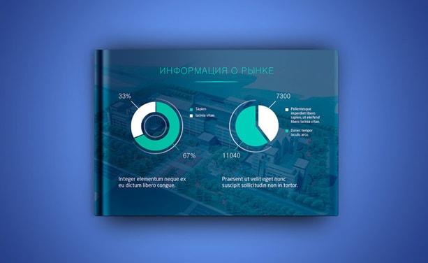 Инвестиционная презентация для проекта