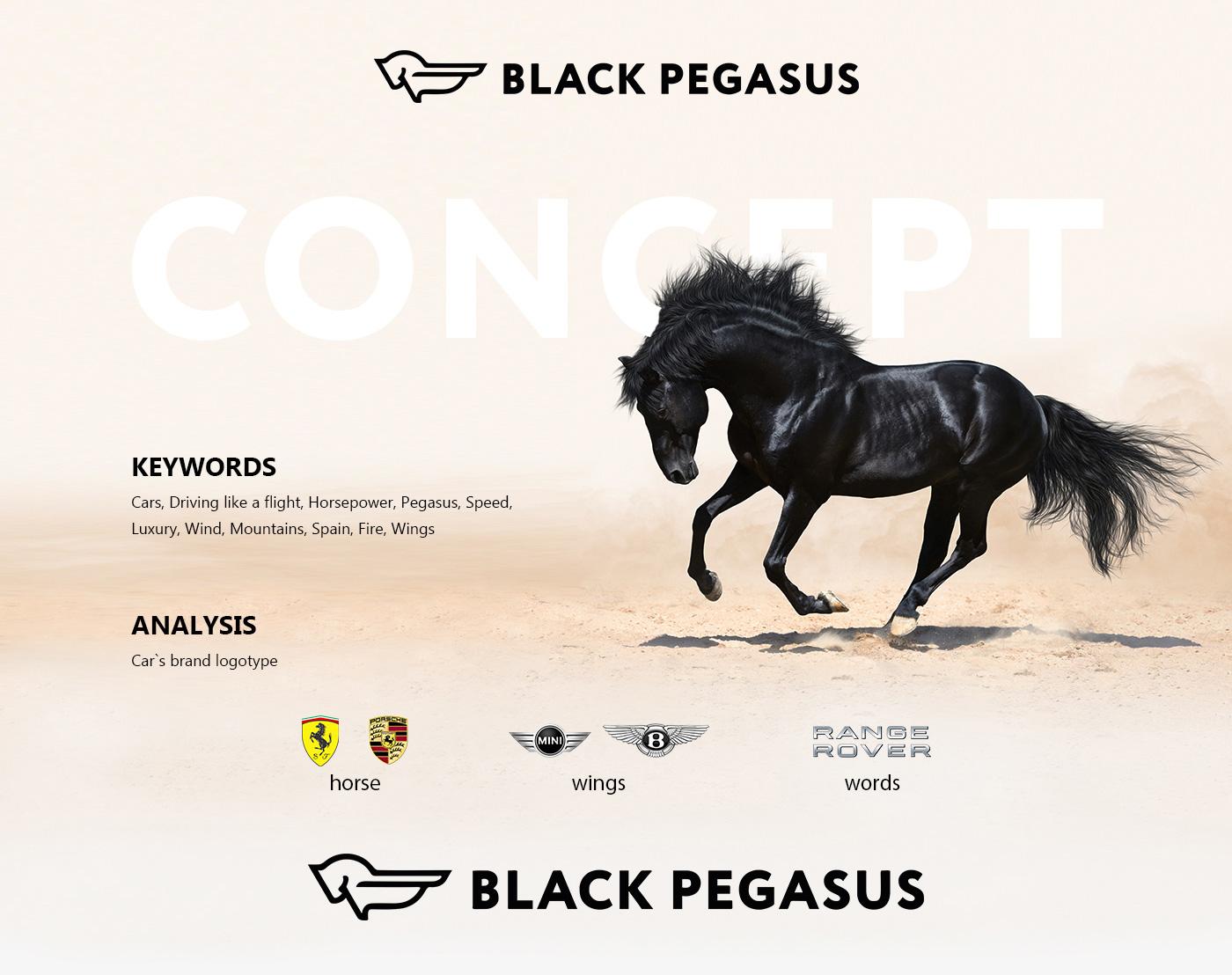Фирменный стиль для Black Pegasus Cars