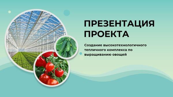 Разработка презентации для проекта по выращиванию овощей